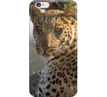The Perfect Pose iPhone Case/Skin