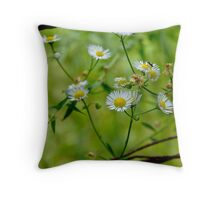 Rust and wildflowers Throw Pillow