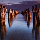 Clifton Jetty Stumps by Janet Rogerson