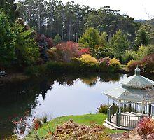 Emu Bay Rhododendron Gardens by Judi Rustage