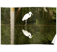 White Bird - Niteroi - Brasil Poster