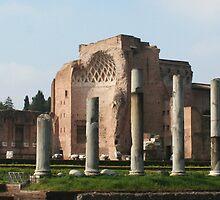 Roman Forum by Vanessa Goodrich