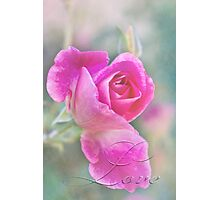 Romantic rose in a mist with love Photographic Print
