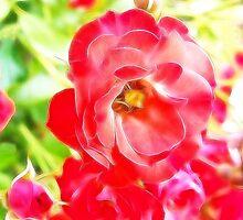 red roses in fractal by vigor