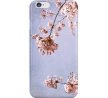 cherry blossoms in spring sky iPhone Case/Skin