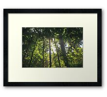 Spiritual Kloth Lost In Peace by Kordial Orange Framed Print