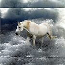 Fantasy White Horse &amp; Ocean Surf Poster by Val  Brackenridge
