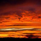 Fiery sunset in Seattle! by aarthir