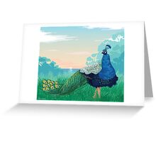 Peacock At The Sunset Greeting Card