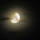 Moon Aglow by Linda Miller Gesualdo