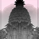 Dunmore Pineapple by ©The Creative  Minds