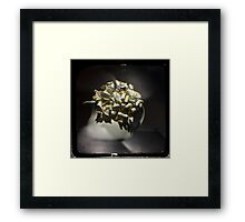 Aging gracefully Framed Print