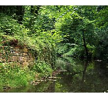 Green water reflections Photographic Print