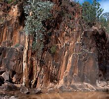 The Flinders Ranges by Jessy Willemse