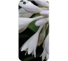 Blooming White Bells iPhone Case/Skin