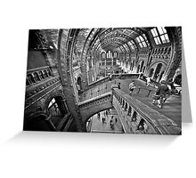 Natural History Museum Staircases - Black and White Version Greeting Card