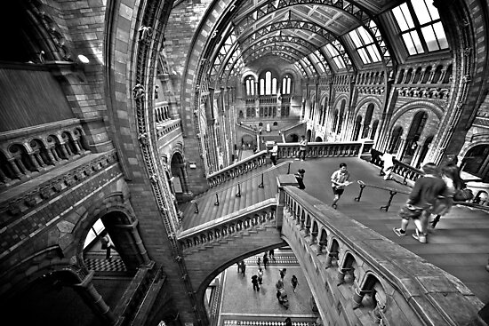 Natural History Museum Staircases - Black and White Version by LeeMartinImages