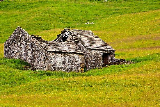 Ruined Barn by Trevor Kersley