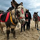 Saltburn's Donkeys on the beach by robwhitehead