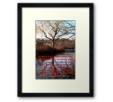 WILLOW BY THE WATER COURSES Framed Print