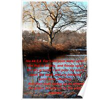 WILLOW BY THE WATER COURSES Poster