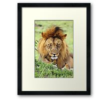 Oh boy, I've really got to stop having those late nights! Framed Print