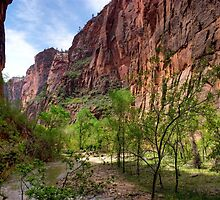 Zion Valley by Gregory Ballos | gregoryballosphoto.com