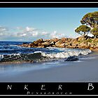 Bunker Bay  by Jodi Kneebone