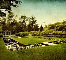 Lily Pond Garden by Jessica Jenney