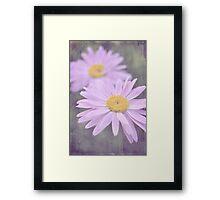 dreaming daisies Framed Print