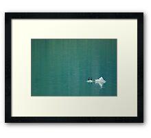 Cormorants on Berg Framed Print