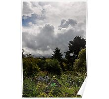 North Devon Garden Poster