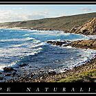 Cape Naturaliste by Jodi Kneebone