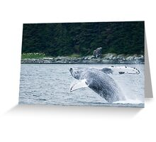 Having a Whale of a Time Greeting Card
