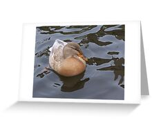 Mama Mallard Greeting Card