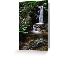 Torrent, Liro Valley V Greeting Card