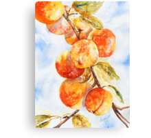 Peaches Without Cream Canvas Print