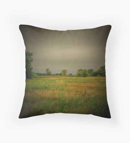 Rainy Day! Throw Pillow