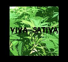 viva sativa by HiddenStash