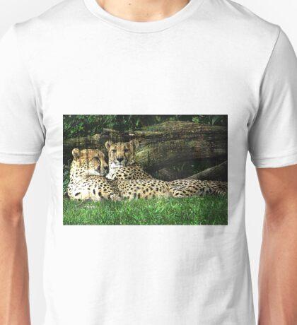 Cheetahs Lounging Grunge Unisex T-Shirt