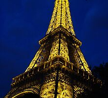 Paris - Eifel Tower by Natasha D