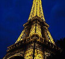 Paris - Eifel Tower by Natasha D