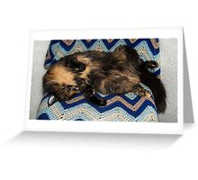 Lucy Snooze Greeting Card