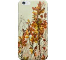 autumn symphonies I iPhone Case/Skin