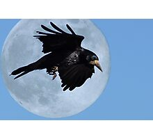 A Crows Moon Photographic Print