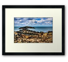 Total Freedom Framed Print