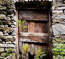 Ancient weathered door in Verdasio, Ticino by Michael Brewer