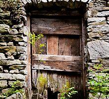 Ancient weathered door in Verdasio, Ticino by Michael Brewer