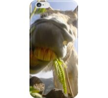 Funny Donkey head smiling iPhone Case/Skin
