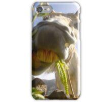 Funny Donkey head smiling iPhone Case/Skin